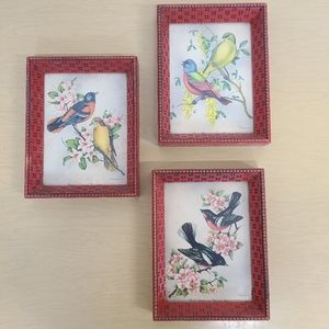 Bundle of 3 Painted Birds and Flowers Frames
